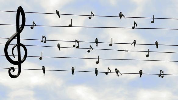 Noten mit Vögel