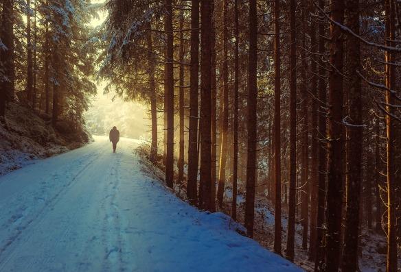 winter-1936638_1920